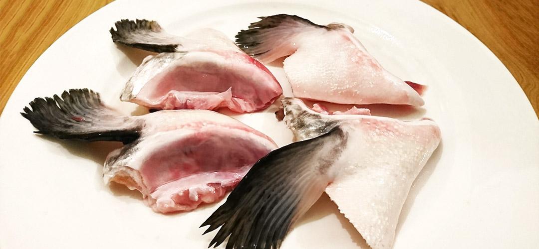 fishcollar